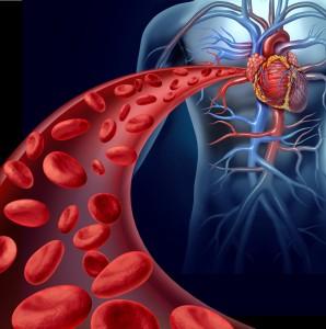 Shutterstock Perio Health