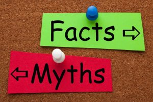 myths vs facts bulletin board